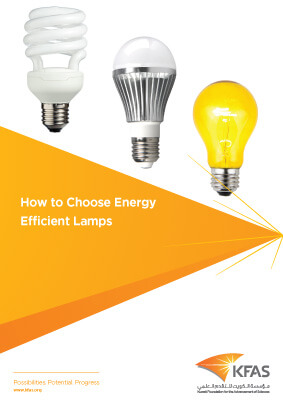 How to Choose Energy Efficient Lamps - The 2015 International Year of Light